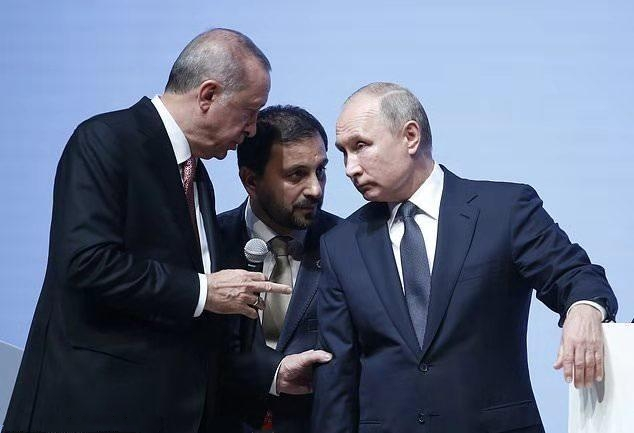 """土俄启动""""土耳其溪""""天然气项目"""